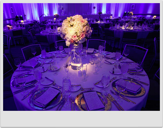 Wedding Planning Styling Design Lighting Effects Emily Annandale We