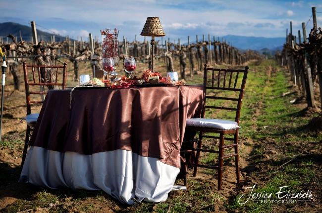 ponte_winery_wedding_photography_vineyard-table_03_reg1